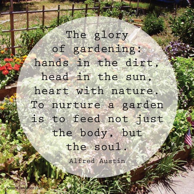 Picture: Smart Gardener